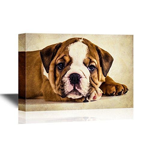 Dogs Breeds English Bulldog Puppy Pet Art for