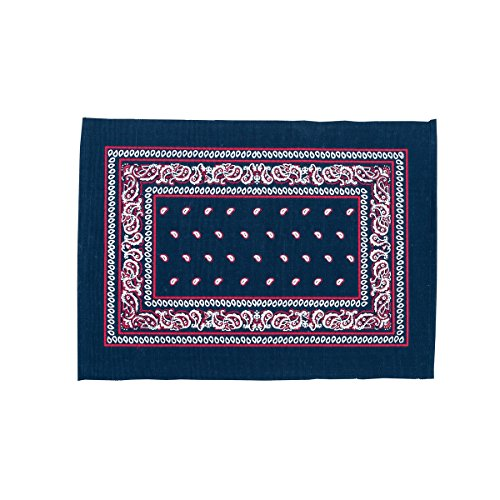 (C&F Home Set of 4 Pcs, 13x19 Quilted Placemat,Bandana Navy)