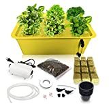SavvyGrow DWC Hydroponics Growing System - Medium Size Kit w/Airstone, Bucket, Air Pump, Rockwool - Best Indoor Herb Garden for Cilantro, Mint - Complete Hydroponic Setup Grow Fast at Home (6 Sites)