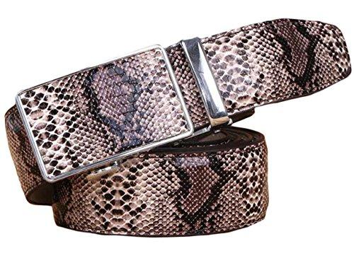 Ayli Men's Genuine Leather Ratchet Belt, Snake Skin Embossed Coffee, Fits All Pant Sizes Below 38