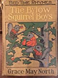 img - for The Bylow Squirrel Boys book / textbook / text book