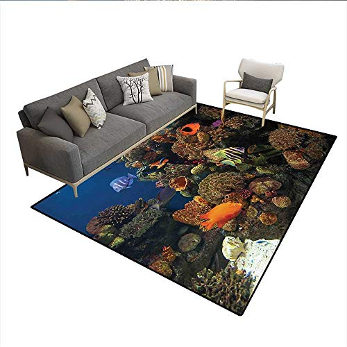 Carpet,Undersea Wildlife Environment with Colorful Sponge Corals Tropic Fishes,Area Silky Smooth Rugs,Brown Orange and Blue 6'6
