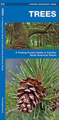 Trees: A Folding Pocket Guide to Familiar North American Species (Pocket Naturalist Guide Series) (A Pocket Naturalist Guide)