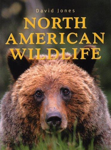 north-american-wildlife-by-david-jones-2009-05-01