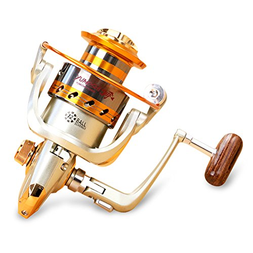 X-CAT NACATIN Spinning Fishing Reel,12 Ball Bearings Light and Smooth,1000 to 7000 Series,Left/Right Interchangeable Spinning Reels Saltwater Freshwater Fishing 5.5:1
