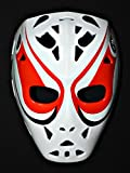 1:1 Custom Vintage Fiberglass Roller Air Ice Hockey Goalie Mask Helmet Dave Dryden HO46