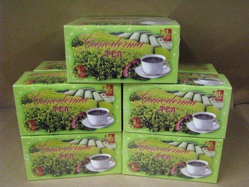 6 Box Ganoderma Brand Green Tea Sugar Free - Low Caffeine (20 Count Per Box) by Ganoderma
