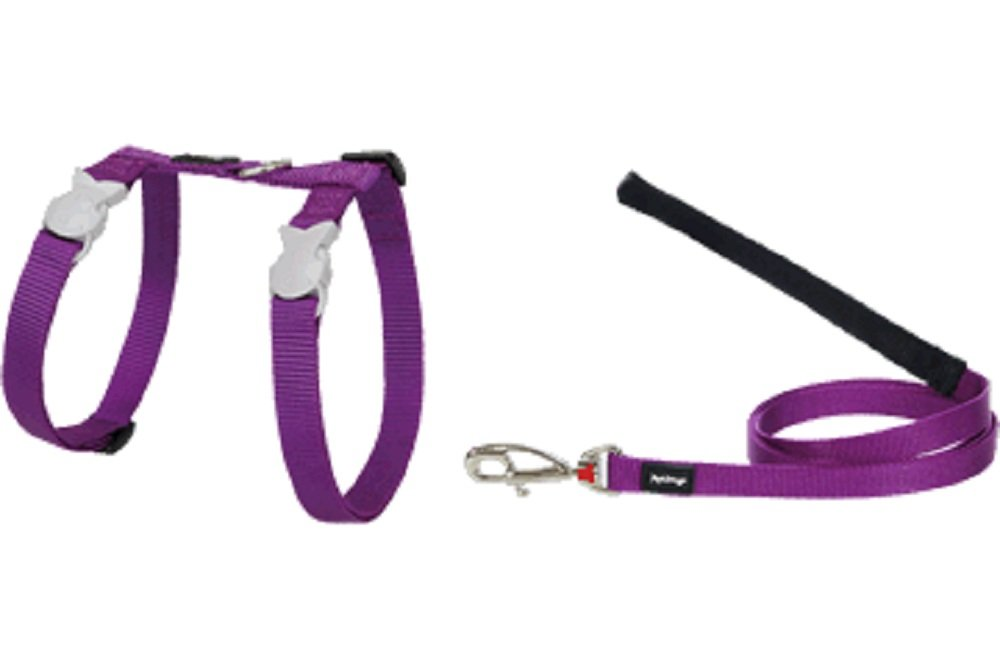 Red Dingo Classic Cat Harness and Lead Combo, Purple