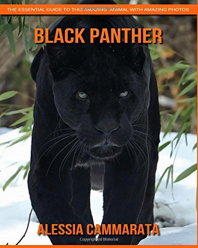 Download Black Panther: The Essential Guide to This Amazing  Animal with Amazing Photos PDF