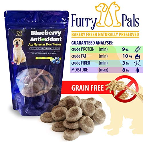 Grain Free Dog Treats – Blueberry Antioxidant – All Natural – Manufactured in The USA – Gluten Free Dog Treats by Furry Pals (Furry Pal)