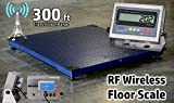 DigiWeigh 10000Lb/1Lb Wireless Floor Scale (DWP-10000RW)