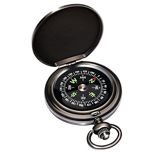 Eaggle Classic Compass for Camping and Birthday Gift (Special Metallic Brass Handle)