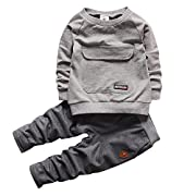 2016 Baby Boys Kids 2 Pieces Fall Clothing Set T-Shirt Pants Outfits(Grey,9-12 months)