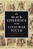 The Black Experience in the Civil War South, Stephen V. Ash, 1612346294