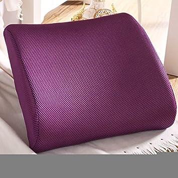 Amazon Com Excellent Purple Memory Foam Lumbar Back Support Cushion