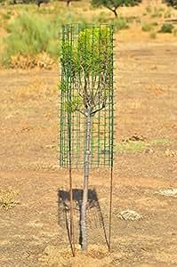 Easytide Cactus Eco Protector para Plantas y Árboles, Verde Monte, 120x90x2.4 cm
