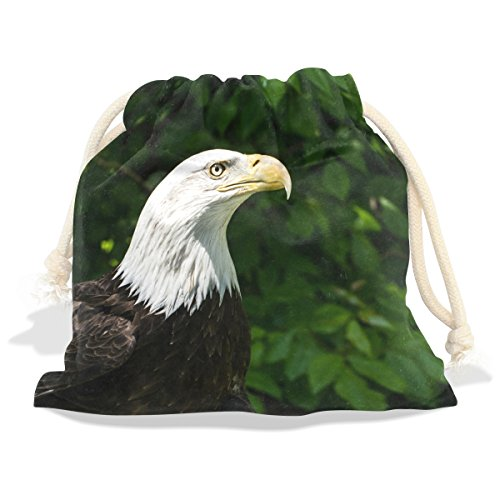 Draw Decals (American Bald Eagle Velvet Drawstring Gift Bag Wrap Present Pouches Favor for Jewelry, Coin, Holiday, Birthday, Party, 8X12.6 Inches)