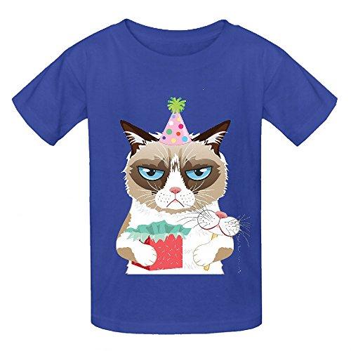 grumpy-cat-bct-teen-crew-neck-short-sleeve-t-shirt-blue