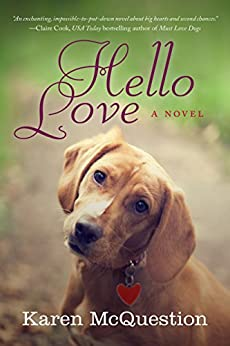 Hello Love Karen McQuestion ebook product image