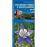 Colorado Trees & Wildflowers: A Folding Pocket Guide to Familiar Plants (Pocket Naturalist Guide Series)
