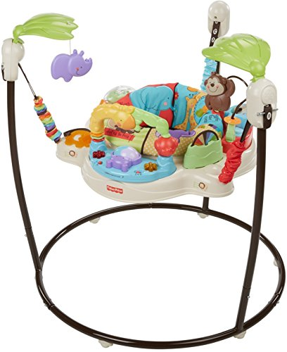 8606dd575b52 Amazon.com   Fisher-Price Luv U Zoo Jumperoo   Stationary Stand Up ...