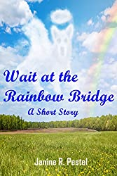 Wait at the Rainbow Bridge
