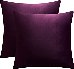 JUSPURBET Decorative Velvet Throw Pillows Covers for Couch Bed Sofa,Pack of 2 Luxury Soft Cushion Cases,18x18 Inches,Eggplant Purple