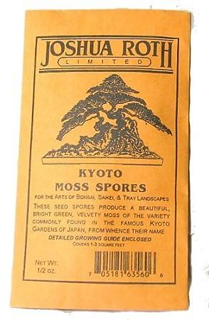 Berühmt KYOTO Moos Sporen: Amazon.de: Garten &VL_22