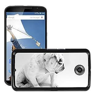 Super Stella Slim PC Hard Case Cover Skin Armor Shell Protection // M00106121 Dog Bulldog Animal White Sitting // LG Google Nexus 6