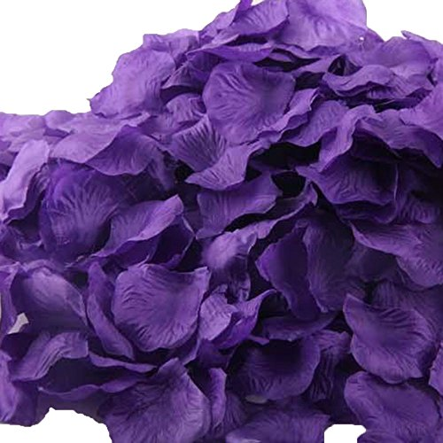UGE 4000 PCS Artificial Silk Rose Petals Carpet Flowers Bulk for Wedding Favor Party Decoration (Purple) -