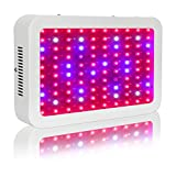 Gianor 1000 Watt Double Chips Led Grow Light with a US Plug and Hanging Kit Full Spectrum Leds Lights for Indoor Garden Hydroponic Greenhouse System Plants Flowers Vegetables Growing