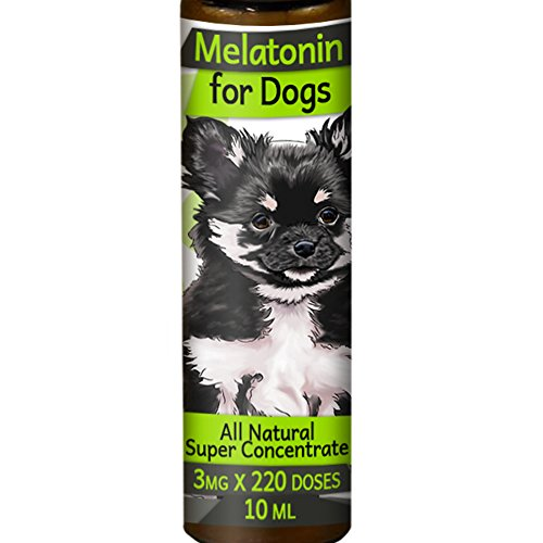 Ironpower Melatonin for Dogs 3mg 220 Count - Calming Aid Drops - Sleep, Stress Relief, Anxiety Supplement - MelaCanine