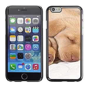 Labrador Retriever Lab Puppy Sleeping - Metal de aluminio y de plástico duro Caja del teléfono - Negro - Apple Iphone 6