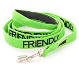 FRIENDLY Green Color Coded 6 Foot Padded Dog Leash (Known As Friendly) PREVENTS Accidents By Warning Others of Your Dog in Advance