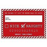 Big Dot of Happiness Santa's Naughty List Mug Shots