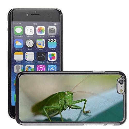 """Bild Hart Handy Schwarz Schutz Case Cover Schale Etui // M00135610 Insekt Heuschrecke Natur Tier // Apple iPhone 6 PLUS 5.5"""""""