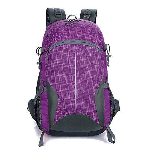 HWLXBB Outdoor Bergsteigen Tasche 40l Anti-Spritzwasser Wasser Licht Reise Bergsteigen Rucksack Männer und Frauen Walking Bergsteigen Tasche ( Farbe : 4* )