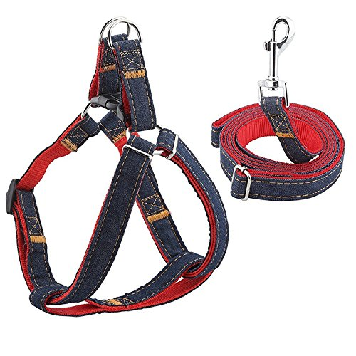 Spider Harness Dog Costumes (GEMEK Dog Leash Harness Adjustable&Durable Leash Set&Heavy Duty Denim Dog Leash Collar for Small, Medium, Large and X-Large Dog, Perfect forTraining Walking Running (M(12.6