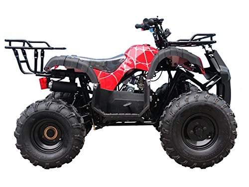 TAO TaoTao Atv TForce 110cc Youth size  Utility ATV with REVERSE and Big Rugged Wheels by TAO (Image #3)