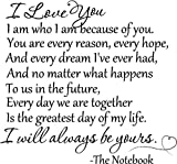 I love you. I am who I am because of you. You are every reason, every hope, and every dream I've ever had, and no matter what happens to us in the future The Notebook quotes saying