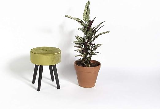 LIFA LIVING Tabouret Salon Design, Petit Tabouret en Bois et Velours Vert  Olive, Tabouret Repose Pieds Bois MDF, Pouf Salon Rond, Pouf Salon Repose  ...