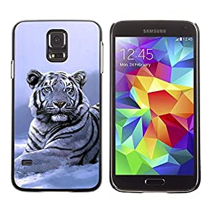 Design for Girls Plastic Cover Case FOR Samsung Galaxy S5 Winter Snow Tiger White Blue Cold OBBA