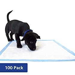 Amazon Brand - Solimo Super Absorbent Puppy Pads