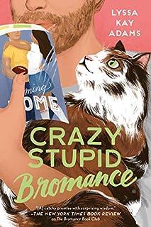 Book Cover: Crazy Stupid Bromance
