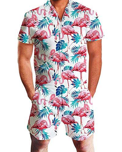 Men's Rompers Zipper Jumpsuit Shorts 3D Graphic One Piece Romper Casual Short Sleeve Jumpsuit Overalls Flamingo M