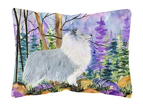 Caroline's Treasures SS8636PW1216 Sheltie Decorative Canvas Fabric Pillow, Large, Multicolor