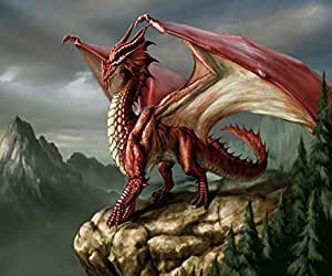 """FKUO 5D DIY Diamond Painting """"Red winged Dragon """" animal world Embroidery 2.8mm Round Diamond embroidery Fashion home decor (30 X 25 cm)"""