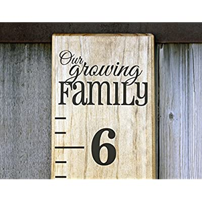 Little Acorns DIY Vinyl Growth Chart Ruler Decal Kit, Our Growing Family: Toys & Games