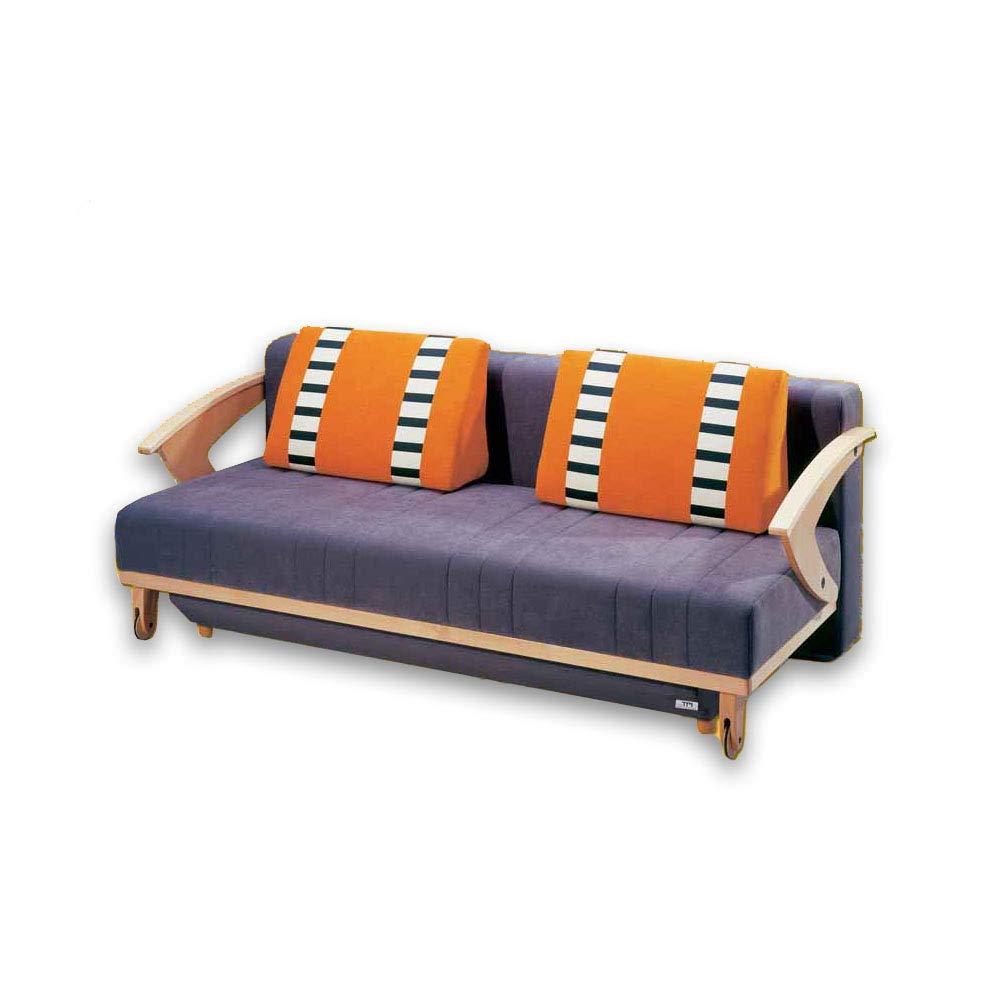 Superb Amazon Com Easy Go Orthopedic Sofa Bed With Storage Lido Interior Design Ideas Skatsoteloinfo