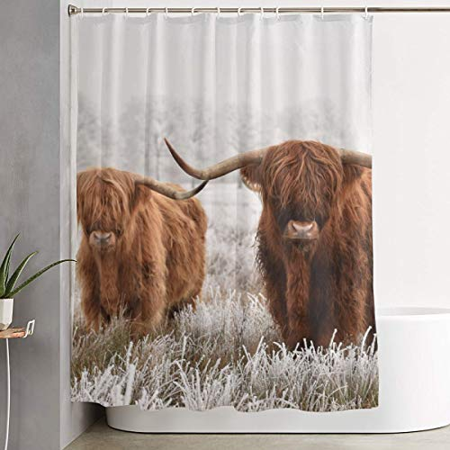 Mikonsu Lihna Shower Curtain with Hooks Hairy Scottish Highland Cows Winter Animals Art Bathroom Decor Bath Curtain-60x70 in (Art Winter Animal)